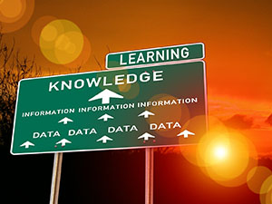"Road sign with the words ""Learning"" and ""Knowledge"" on it"