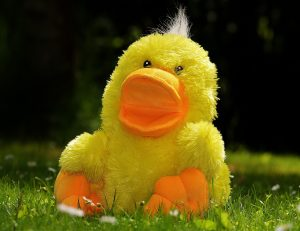 Duck stuffed animal in the grass