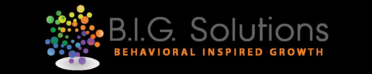 B.I.G. Solutions, LLC